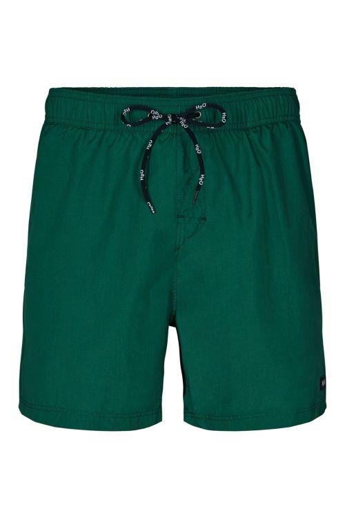 H2O Shorts Leisure Swim Shorts Leaf Front