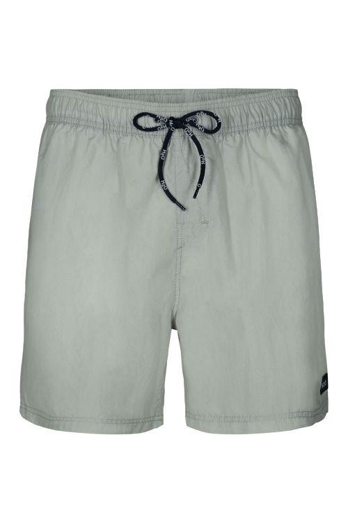 H2O Shorts Leisure Swim Shorts Light Grey Front